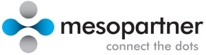 mesopartner logo